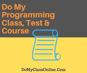 Do My Programming Class, Test & Course
